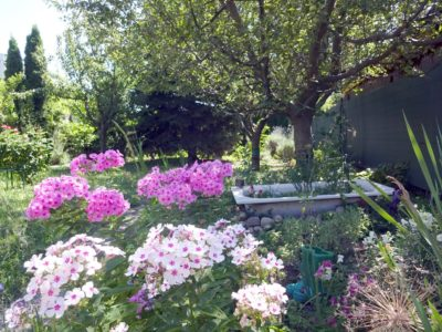 wohntraum immobilien payerbach tometschek rarität alte donau kleingartenhaus
