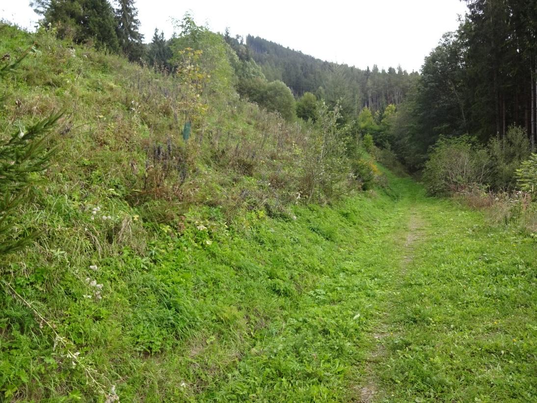 sonniges grundstück am semmering wohntraum immobilien gerhard tometschek payerbach